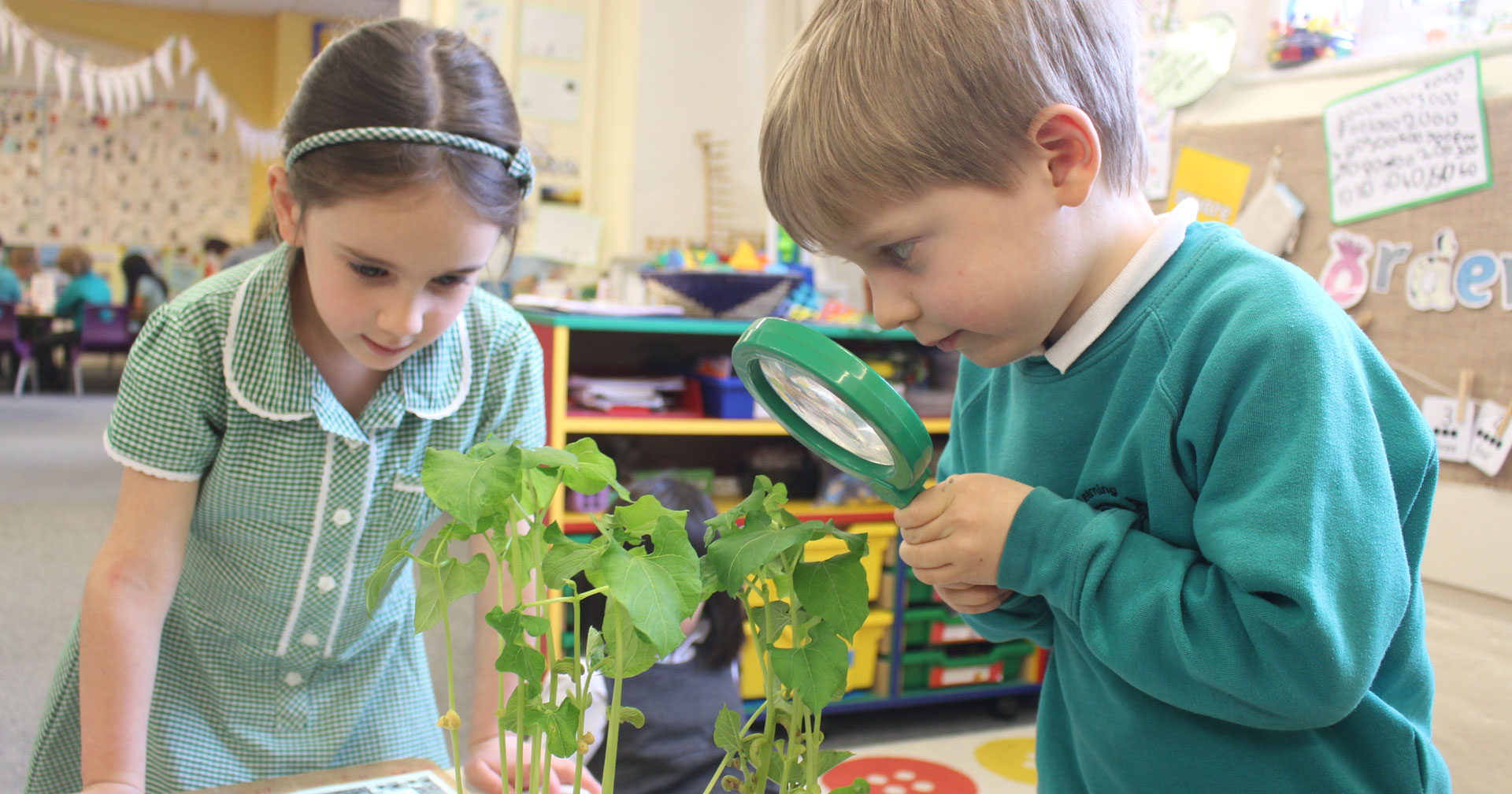 A school where pupils are motivated to learn to attain high standards...